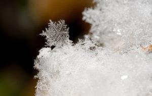 fractyll-20-snowflake