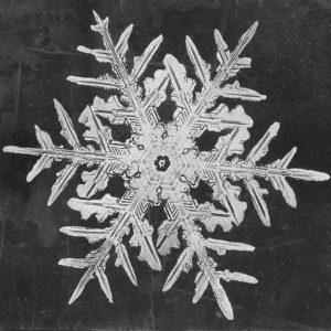 fractyll-21-snowflake